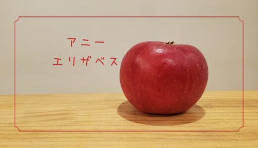 【アニーエリザベス】は英国生まれのとってもレアなりんご|りんごの品種を勉強する#7