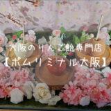 【ポムリミナル大阪】大阪のりんご飴専門店に行ってみた話