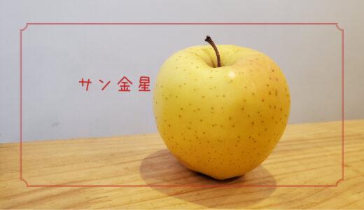 【サン金星】見た目はよくないけどとても甘いりんご りんごの品種を勉強する#13